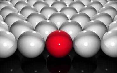 Boutique Funds Differentiate Advisors, Portfolios
